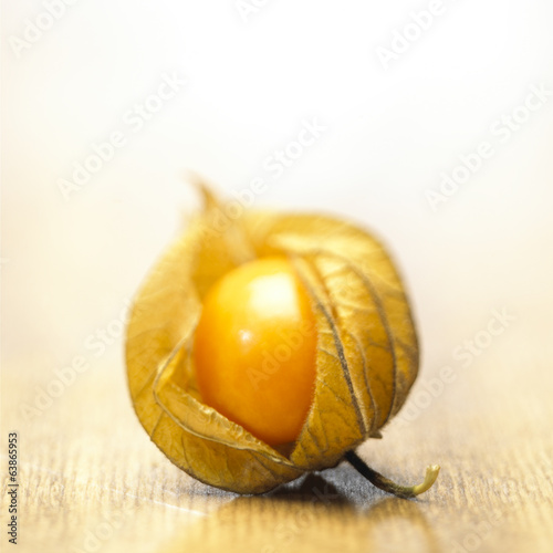 canvas print picture Physalis Frucht Still
