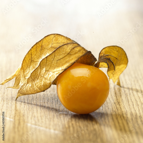canvas print picture Physalis Frucht Still 2