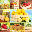 Collage of berries and fruits in wooden boxes