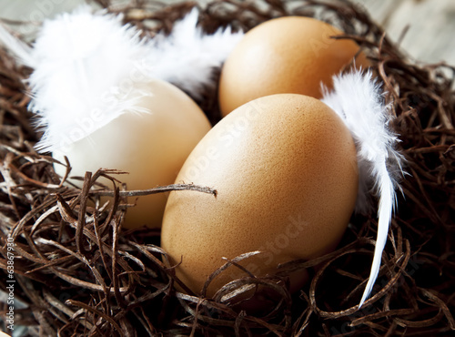 Easter Eggs with Feathers in a Nest