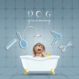 Fototapety Dog in bathroom for grooming