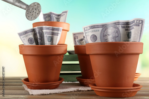 Business concept: growing money in the flowerpots
