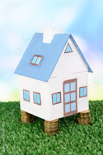House standing on heap of coins on grass on bright background