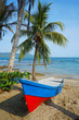 Boat on a tropical beach with coconut tree - 63874733