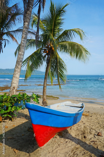 Boat on a tropical beach with coconut tree