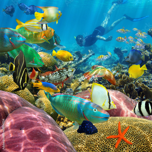 Man underwater coral reef and tropical fish - 63874754
