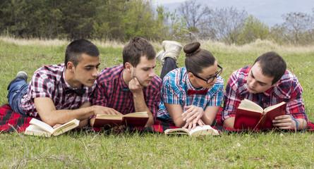 University students studying outdoors