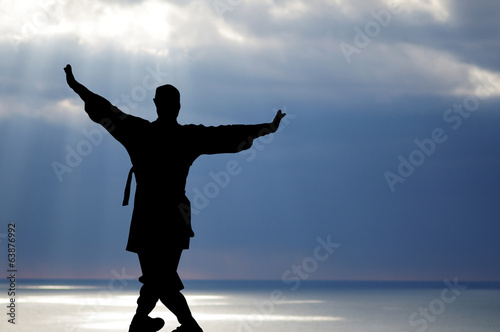 Silhouette of a man engaged in gymnastics Chinese Wushu