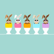 5 Rabbits Sunglasses Eggshells Eggcups Retro
