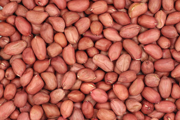 Peanut kernel red abstract background