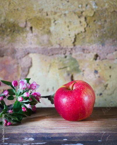 sprig of apple and apple on a background of a brick