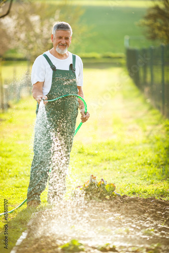 Portrait of a handsome senior man gardening in his garden