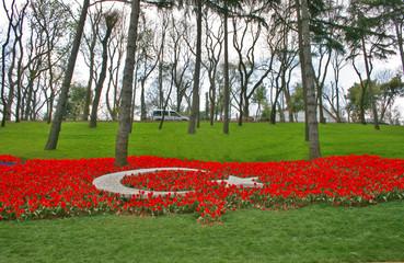 Turkey Map with Tulips in Emirgan Wood,Istanbul