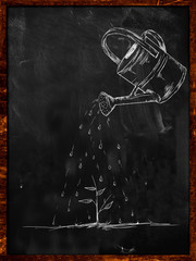 Watering Small Plant sketch on blackboard