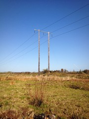 powerlines in a field