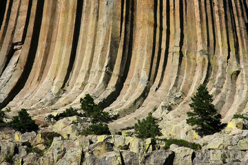 Devil's tower detail
