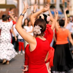 dancers expert and Spanish dance