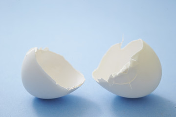 Broken egg shells