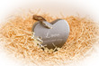 single lonely wooden heart in a love nest