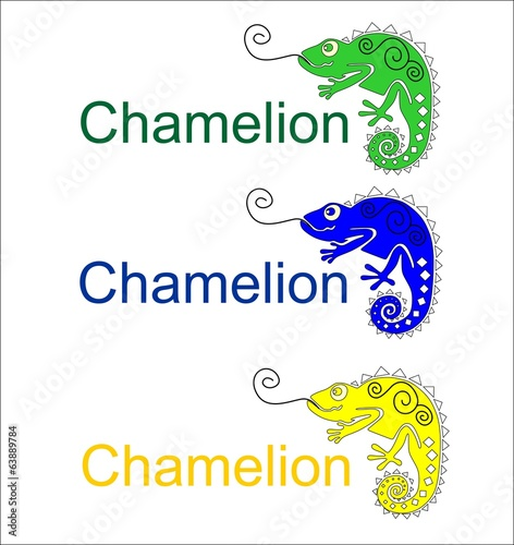 Chameleon different colors