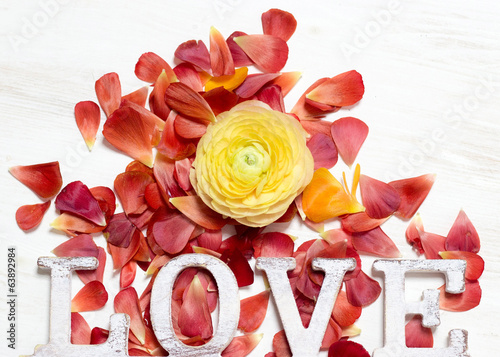 Ranunculus flowers and letters LOVE background
