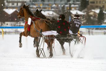 gara con calessi sulla neve