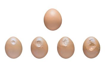 egg crushing process