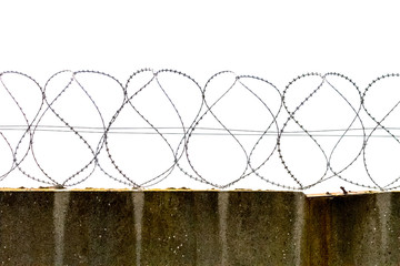 Preview reinforced concrete fence with barbed fencing