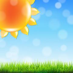 Summer Sun With Grass