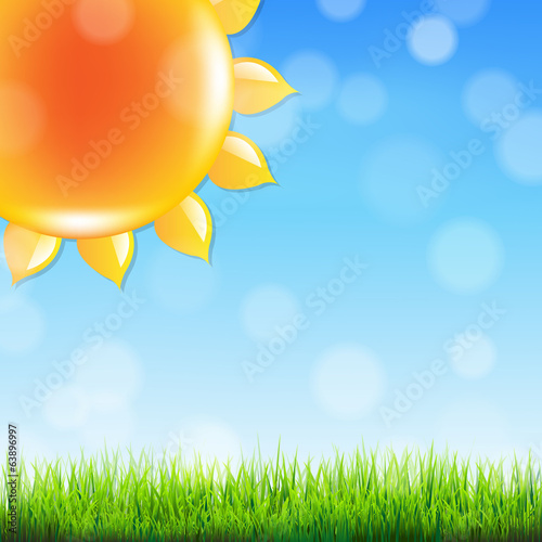 Summer Sun With Grass