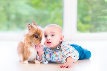 Adorable little baby playing with a funny real bunny on floor