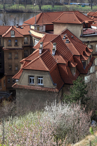 Red roofs of residential area