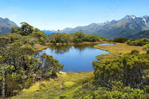 magnificent landscapes of New Zealand