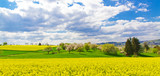 Frühlingszeit auf dem Land