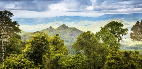 Aluminium Australië Queensland Rainforest