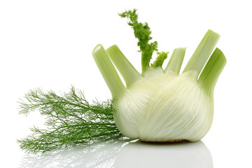 Fresh Fennel