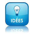 "Bouton Web ""IDEES"" (solutions idées innovation imagination rêve)"