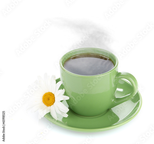 fresh tea camomile flowers