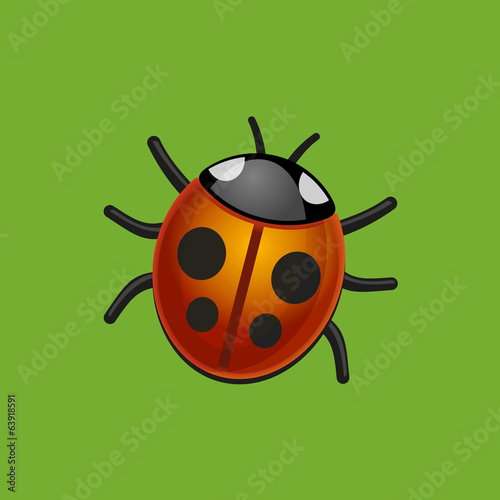 Ladybird Bug on Green Leaf. Vector.