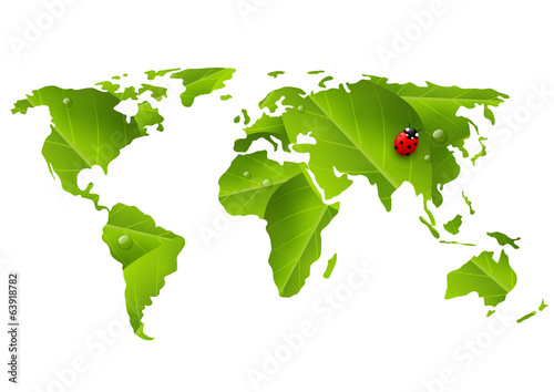 Green World map with ladybug