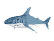 White Shark in Pixel Style isolated on white background