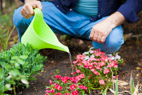 Watering flowers with a watering can