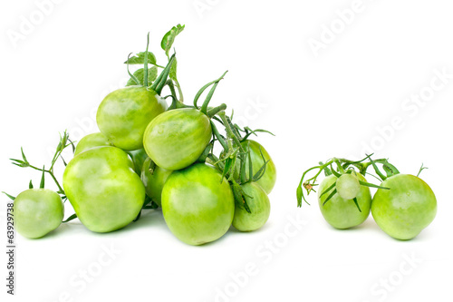 Branch of green tomatoes