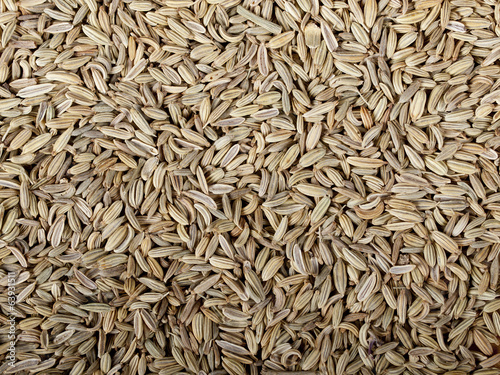 Heaps of dried fennel seeds usable as a background