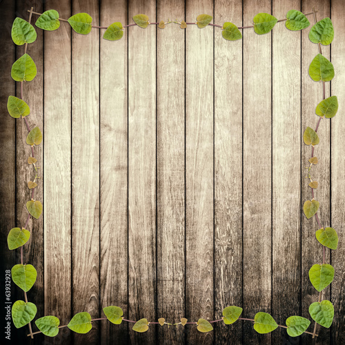 green creeper plant frame on rough wood plank