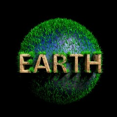 Green sphere with wooden Earth text isolated on black