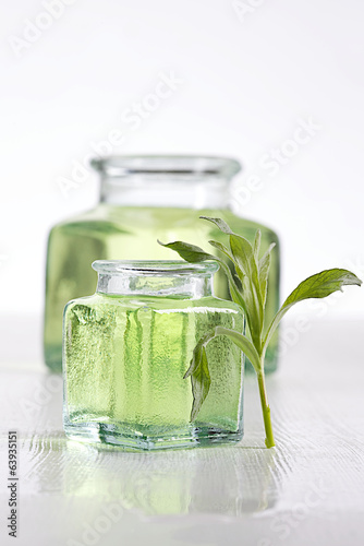 Fresh tarragon leaf with bottle of essential oil on background