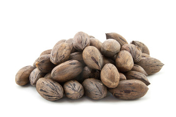 Pile of Newly Harvested Brown Pecan Nuts