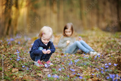 Little sisters picking spring flowers