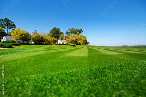 Perfectly striped freshly mowed garden lawn
